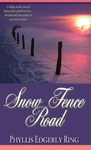 Snow Fence Road Cover